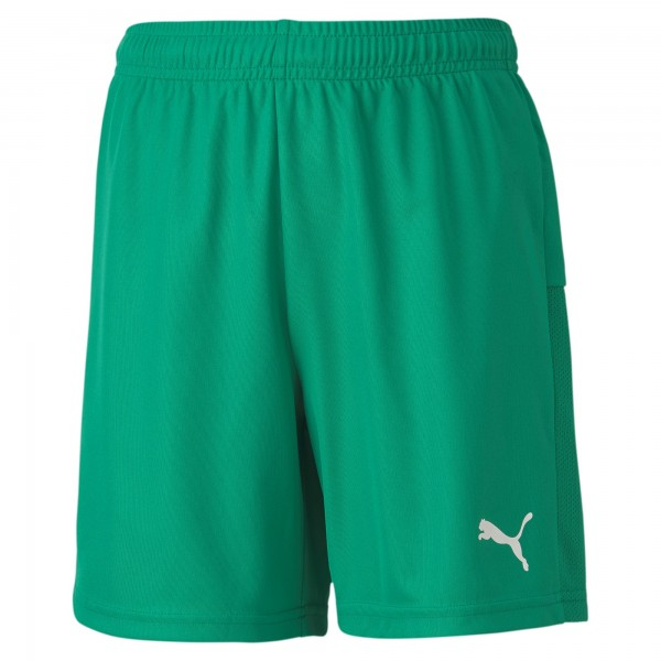 Puma TeamGOAL 23 Knit Jr Kinder Shorts 704263 (Grün 05)