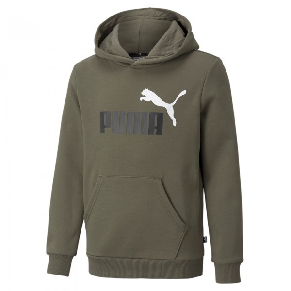 Puma Ess+ 2 Col Big Logo FL B Kinder Hoodie 586987 (Grün 44)