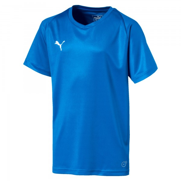 Puma LIGA Core Jr Kinder Shirt 703542 (Blau 02)