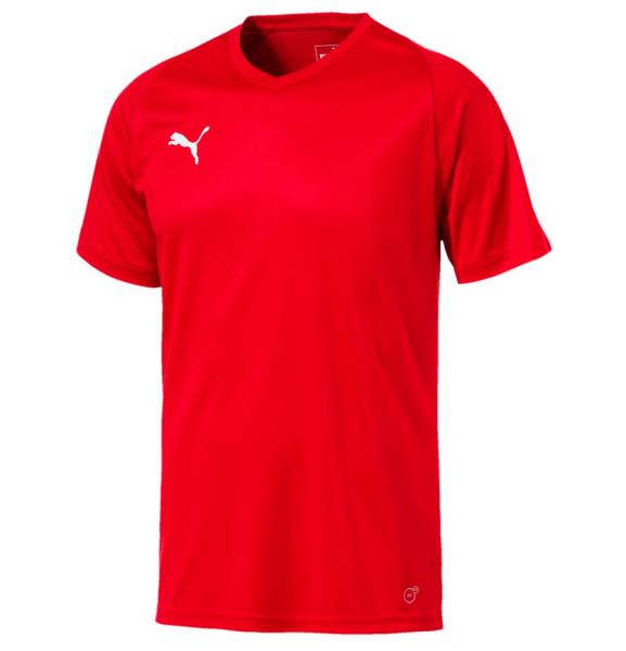 Puma LIGA Core Herren Shirt 703509 (Rot 01)