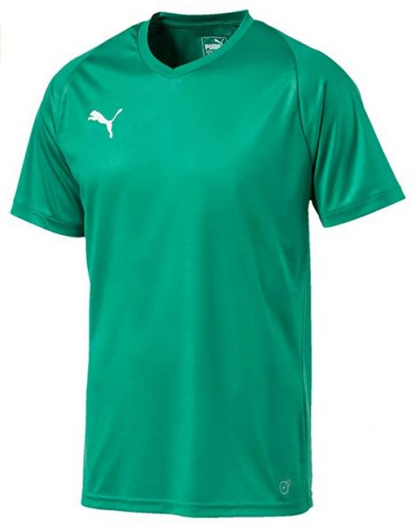Puma LIGA Core Herren Shirt 703509 (Grün 05)