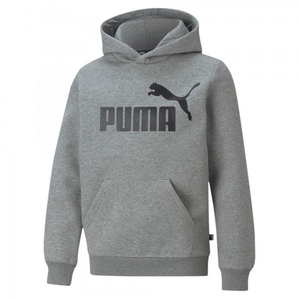 Puma ESS Big Logo FL B Kinder Hoodie 586965 (Grau 03)
