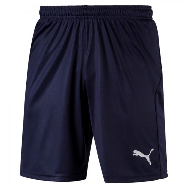 Puma LIGA Core Herren Shorts 703436 (Blau 06)