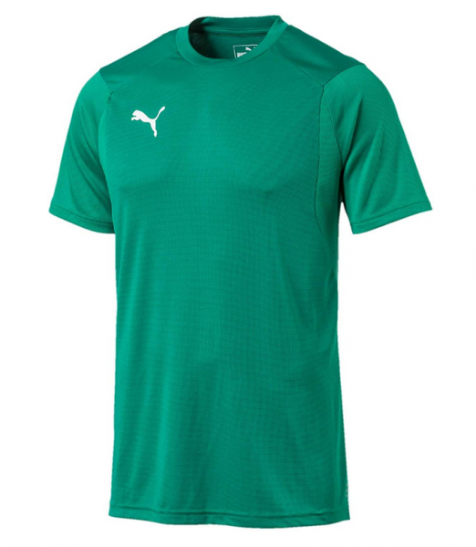 Puma LIGA Training Herren Shirt 655308 (Grün 05)