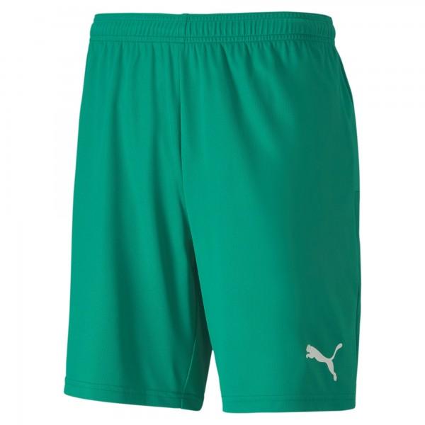 Puma TeamGOAL 23 Knit Herren Shorts 704262 (Grün 05)