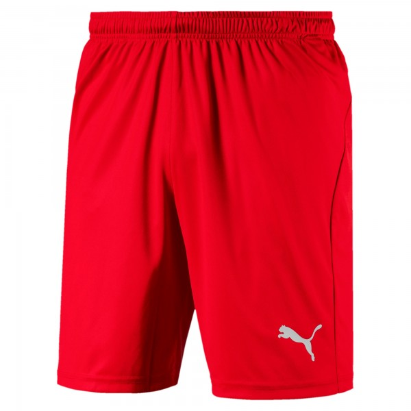 Puma LIGA Shorts Core Herren Hose 703615 (Rot 01)