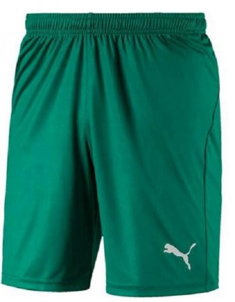 Puma LIGA Core Herren Shorts 703436 (Grün 05)