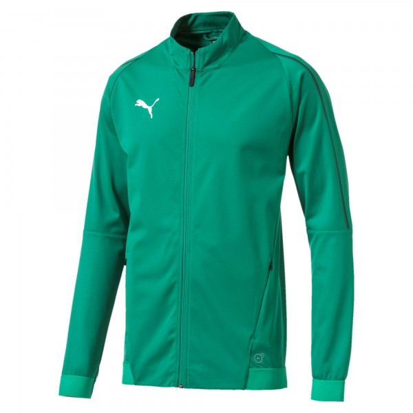 Puma FINAL Training Herren Jacke 655288 (Grün 05)