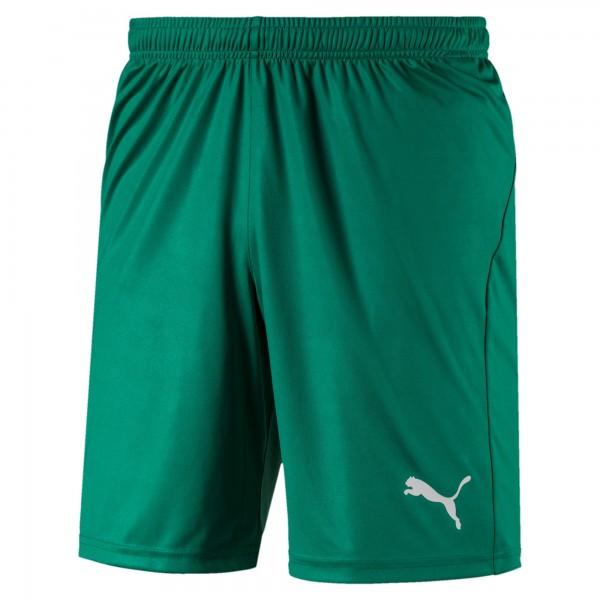 Puma LIGA Shorts Core Herren Hose 703615 (Grün 05)
