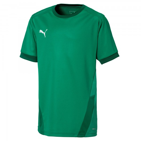 Puma TeamGOAL 23 Jr Kinder Shirt 704160 (Grün 05)