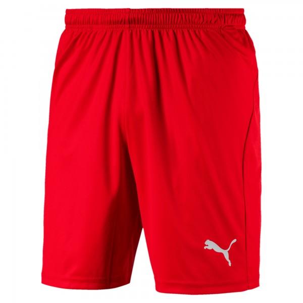 Puma LIGA Core Herren Shorts 703436 (Rot 01)