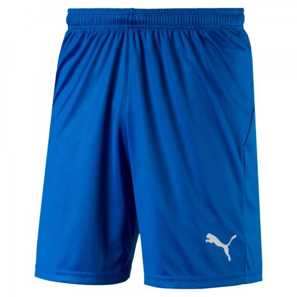 Puma LIGA Core Herren Shorts 703436 (Blau 02)