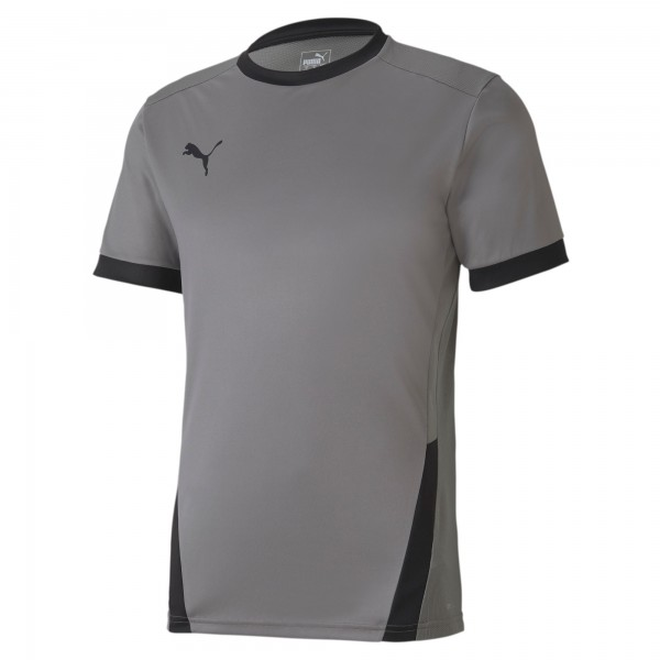 Puma TeamGOAL 23 Herren Shirt 704171 (Grau 13)
