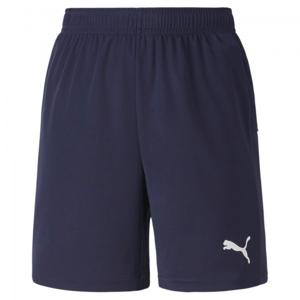 Puma TeamGOAL 23 Knit Jr Kinder Shorts 704263 (Blau 06)
