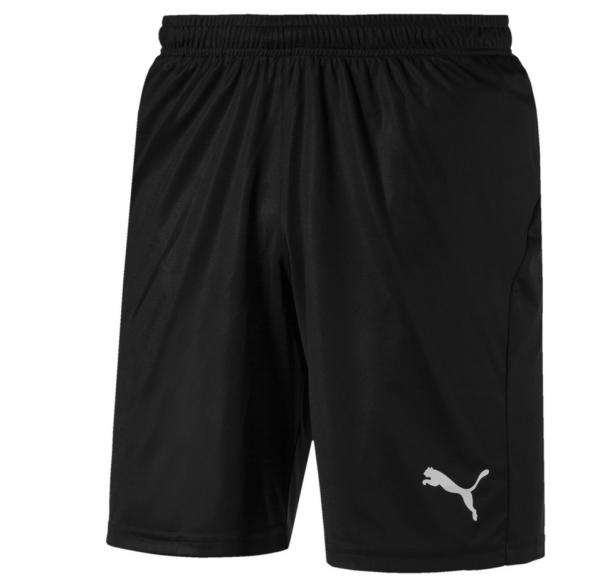 Puma LIGA Core Herren Shorts 703436 (Schwarz 03)
