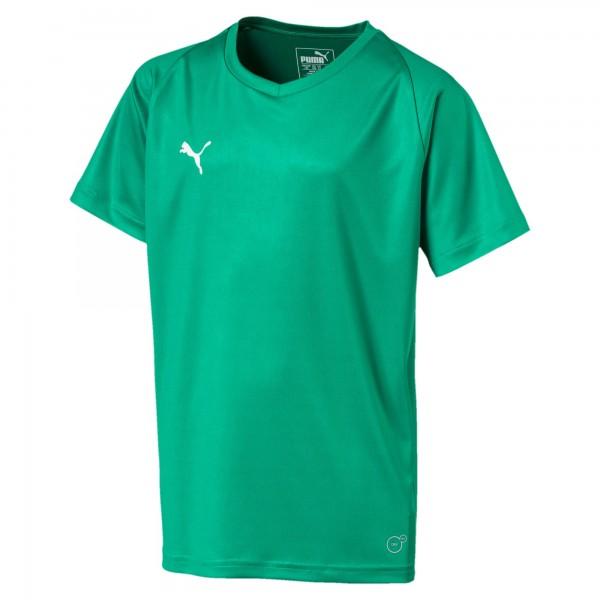 Puma LIGA Core Jr Kinder Shirt 703542 (Grün 05)
